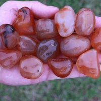 Carnelian Tumbled Stone-Cosmic Cuts