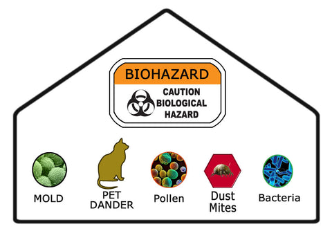 Common household allergens, molds and fungi that can be filtered from the air in your home