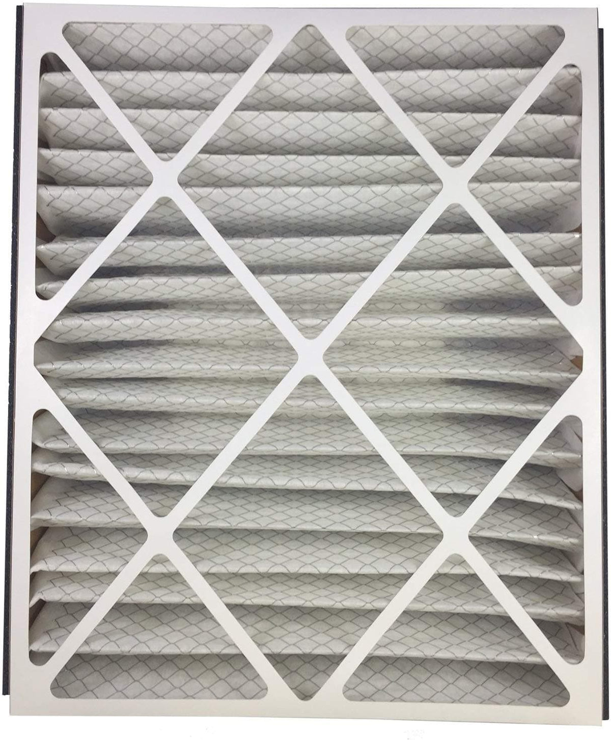 Atomic 266649-102 Trion Air Bear 20x25x5 MERV 13 Compatible Replacement Filter - 2 Pack