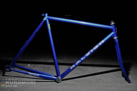 Raleigh Special Product Division Lo Pro Track Frameset