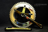 Custom Sugino75 Crank with Super Sugino S3 chainring (S-Cubic).