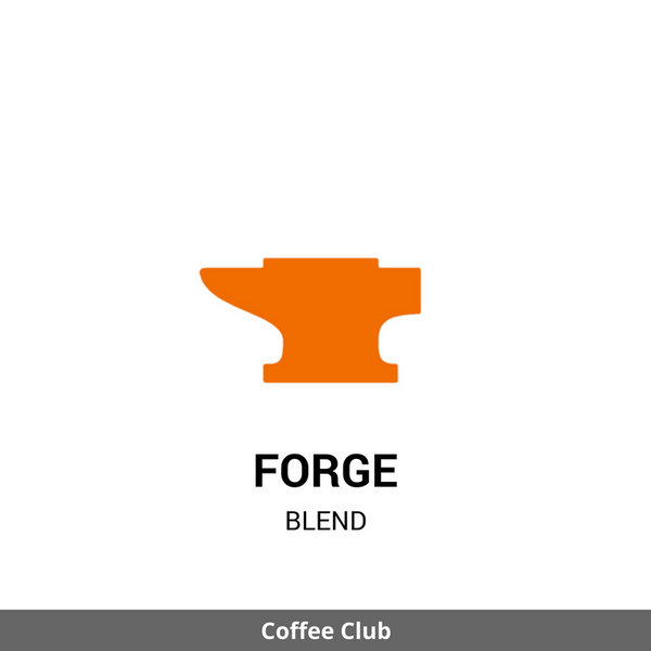 Forge: Summer Iced Coffee Blend (1.0 lb)