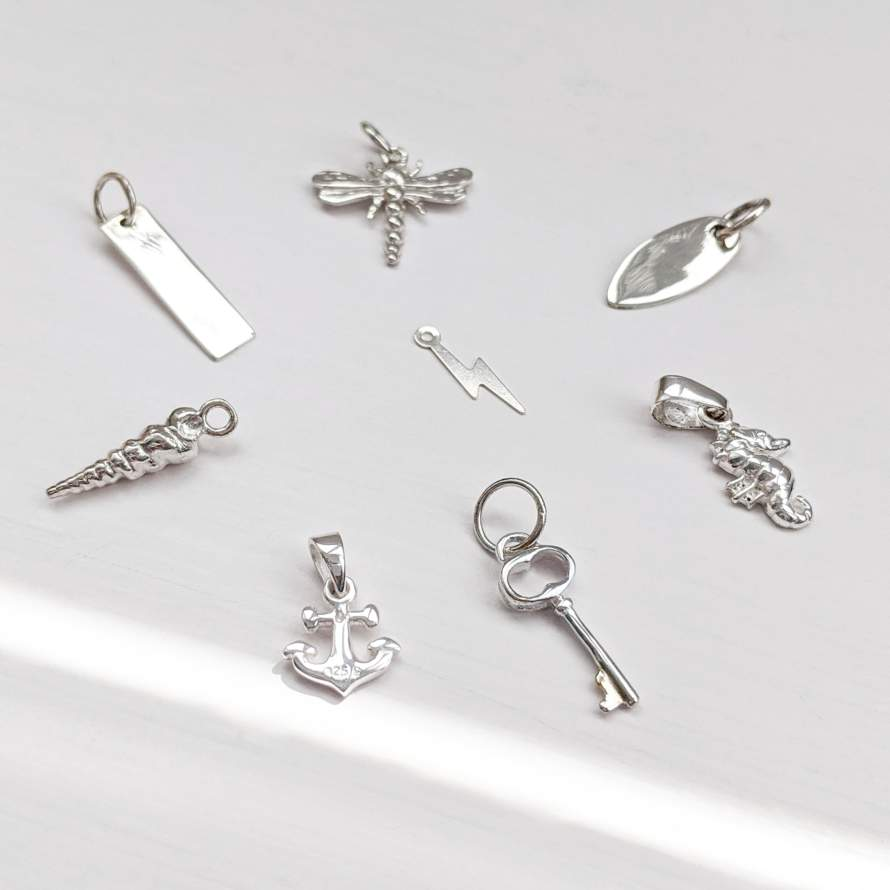 Choose your own Silver Charm