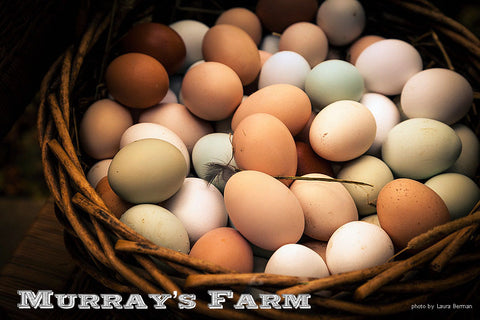 Murray's Farm Eggs