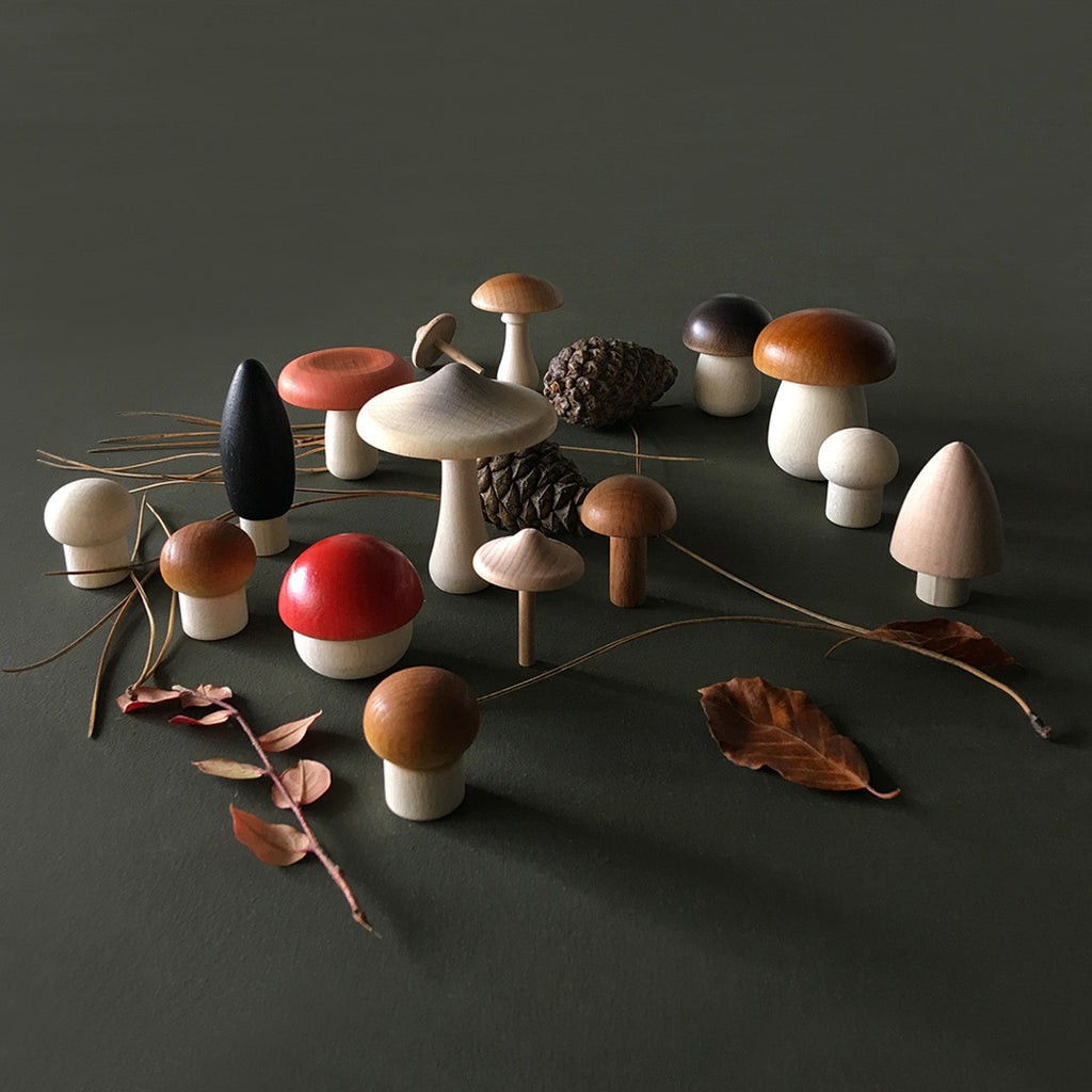 Ferest Mushrooms Basket by Moon Picnic