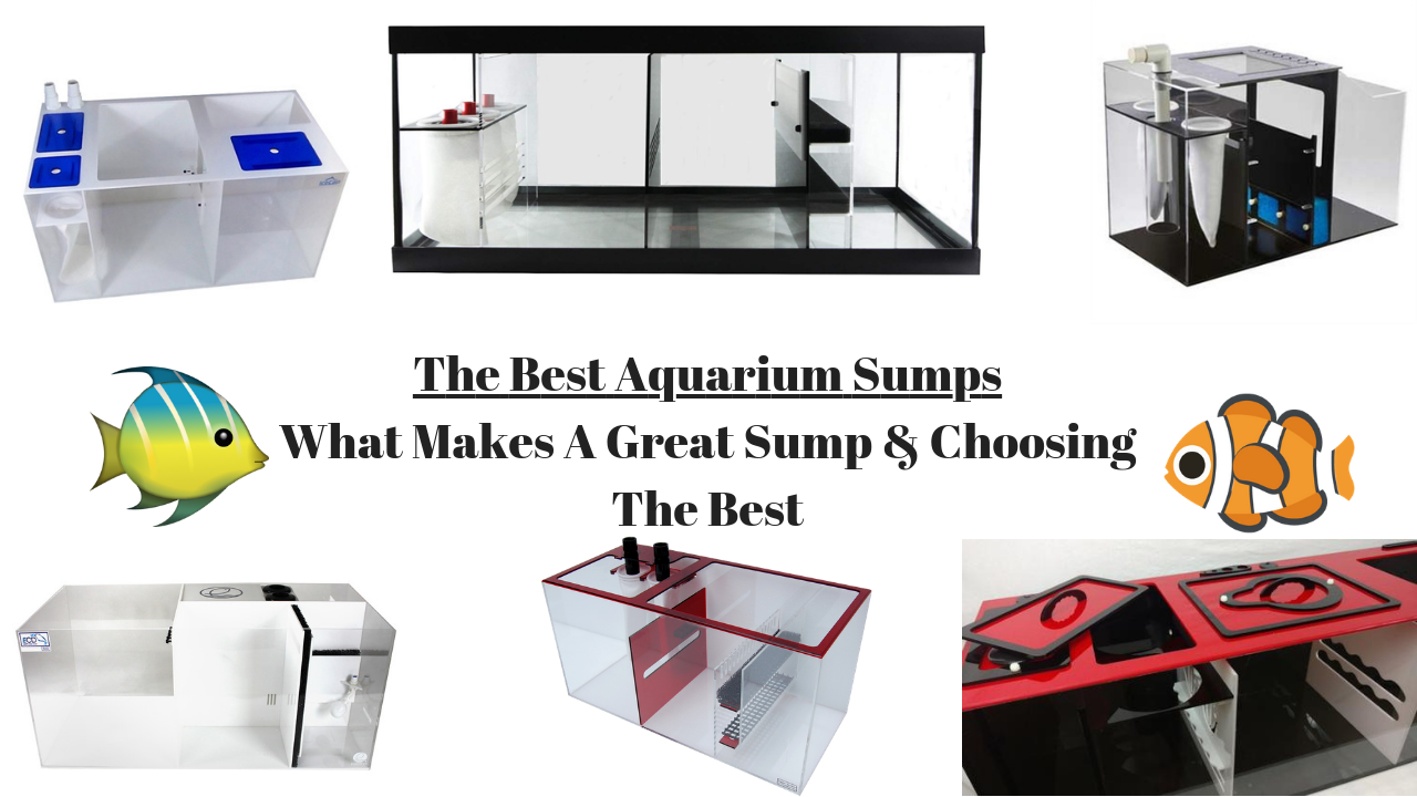 Best Aquarium Sump & Refugium in 2019 (REVIEWS) - Choosing A Sump