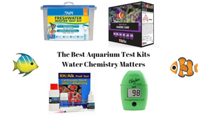 Best Aquarium Test Kits - Water Chemistry Matters