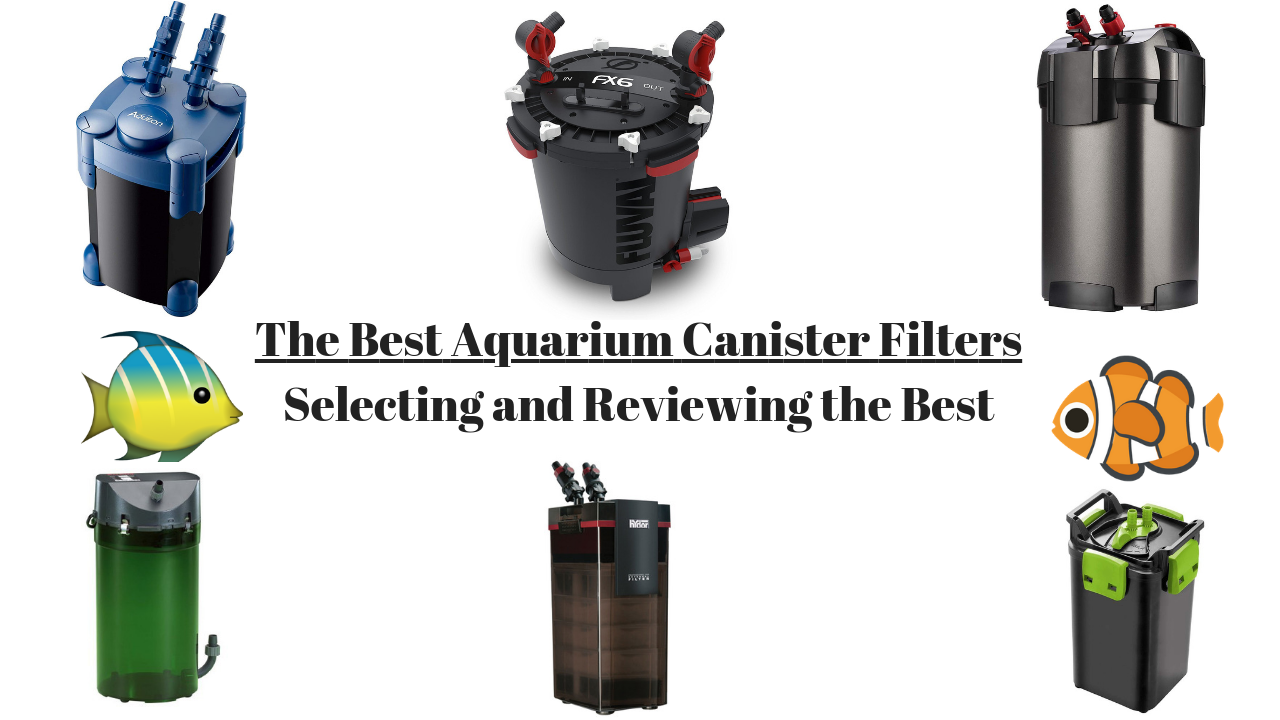the best canister filters for aquariums 2019 reviews and top picks