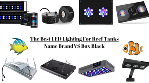 Best LED Lighting for Reef Tanks – (2019 Reviews) & Guide