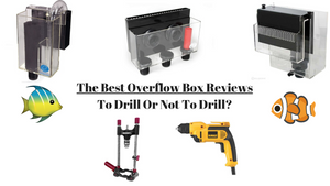 Best Overflow Boxes - Hang On Overflows vs. Drilled and Best to Buy 2019 Reviews