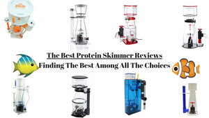 Best Protein Skimmer Reviews - (2019 Reviews & Guide)