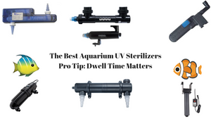 Best UV Sterilizer Reviews - Find What Works And What Is Affordable