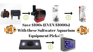 Saltwater Aquarium Equipment Review - Save 100s (EVEN 1000s) With These Equipment Picks