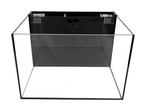 Fiji Cube 30 Gallon Rimless All In One Tank