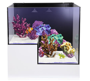 Innovative Marine Nuvo Concept Panorama Aquarium