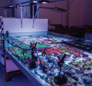 EcoTech Pros at CoralLab Facility