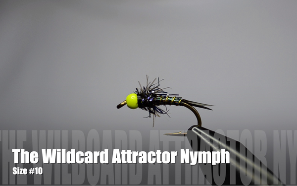 How to Tie an Attractor Nymph for Steelhead Fly Fishing