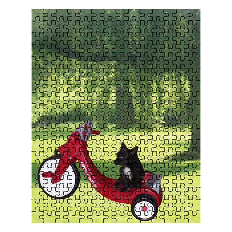 Bae on Tricycle Puzzle