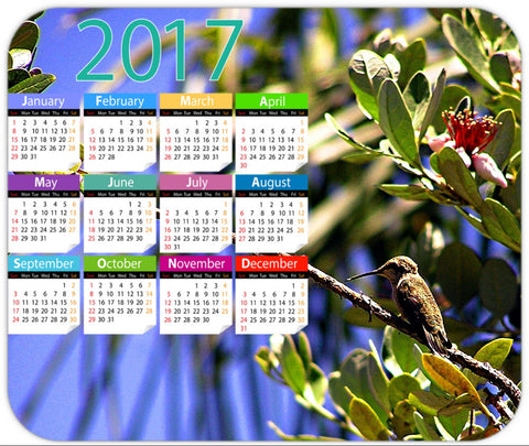Hummingbird in a State of Rest 2017 Calendar Mouse Pad