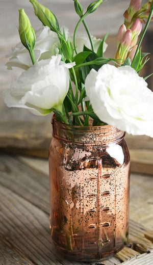 Mercury Mason Jars set of 3 - Knot and Nest Designs