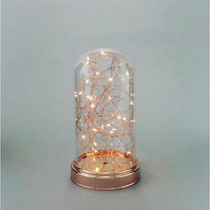 Lighted Dome Cloche - Knot and Nest Designs