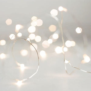 Holiday Fairy lights - Knot and Nest Designs