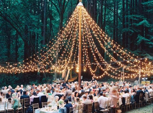 Wedding Globe Light Package Knot And Nest Designs