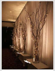 lighted branches - Knot and Nest Designs