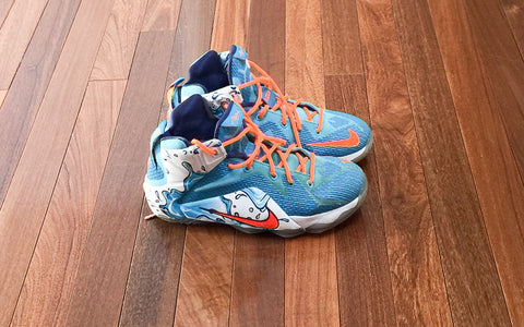 Nike Youth Lebron 12 Buckets