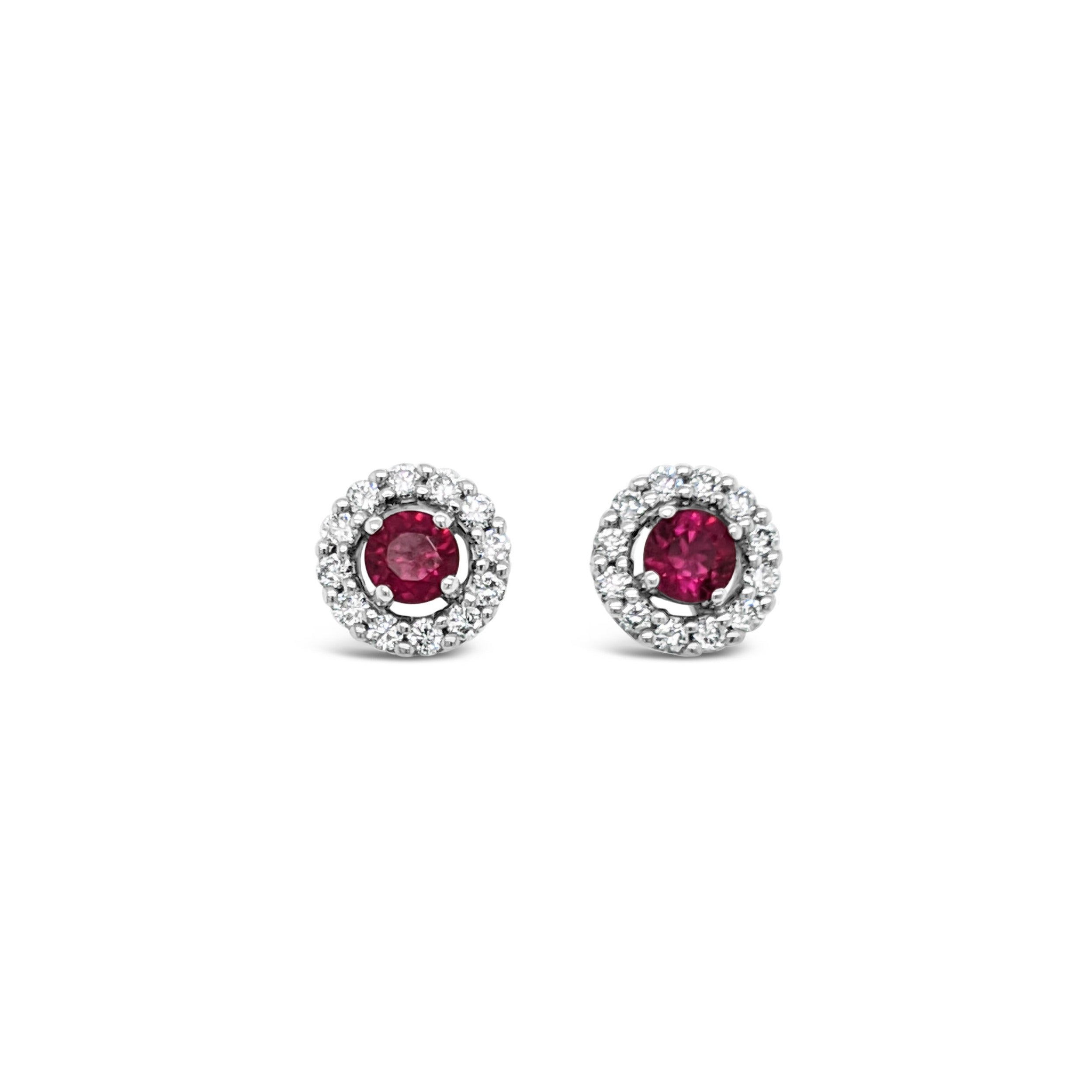 18ct White gold ruby studs with halo of diamonds