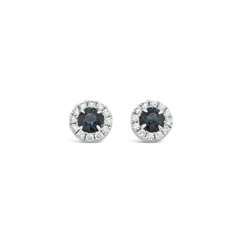 18ct White gold Australian Sapphire halo earrings