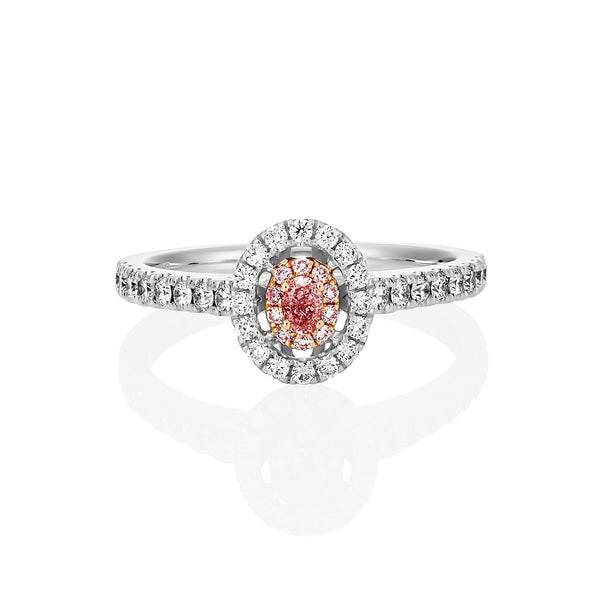 Argyle pink diamond double halo ring