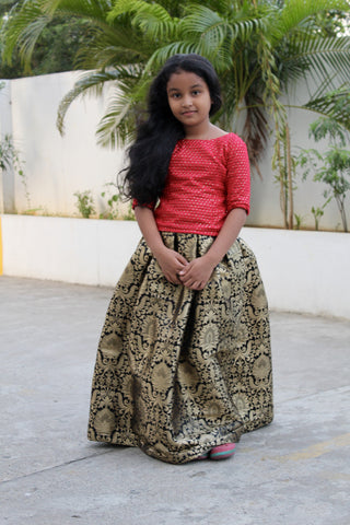 Banarasi brocade black skirt with embroidery top