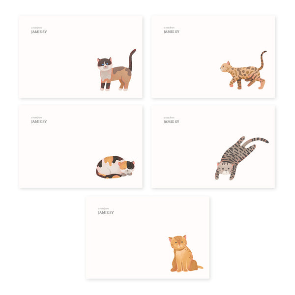 Assorted Cats Notecard