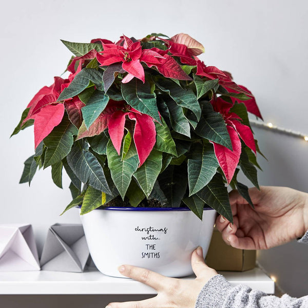 Personalised Christmas Enamel Planter