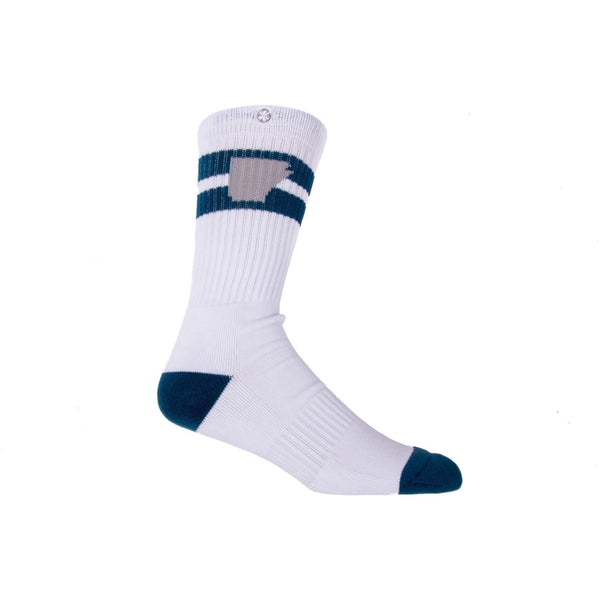 Tailgater Arkansocks Navy Grey
