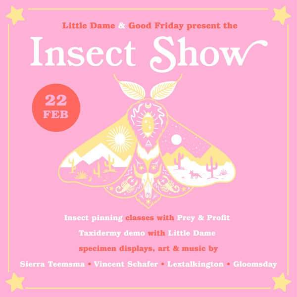 Insect Show // Feb. 22, 2019