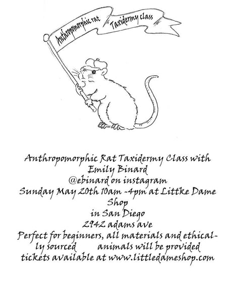 Rat Taxidermy Workshop | Little Dame