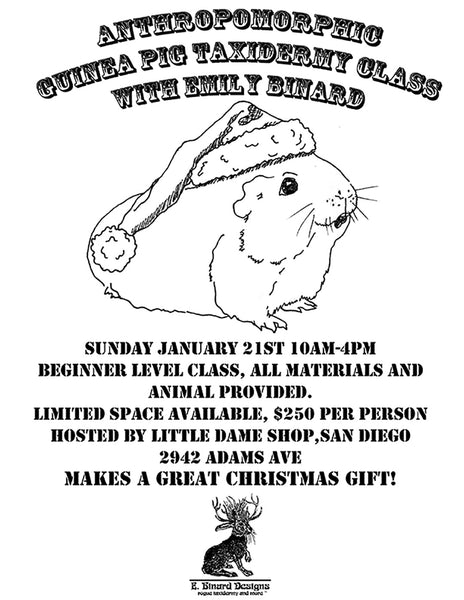 Anthropomorphic Guinea Pig Taxidermy Class With Emily Binard | Little Dame