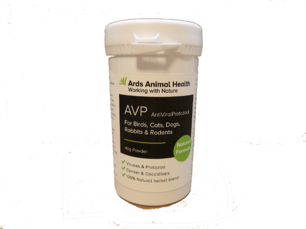 AVP Canker Coccidiosis Parasite Control for Pigeons Poultry & Other Birds