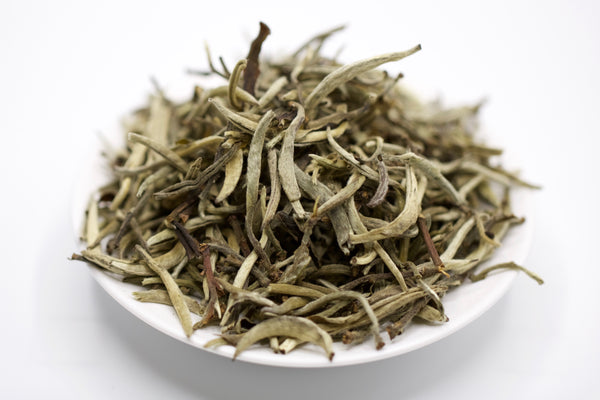 Snow Sprout White Pu'er