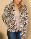 Born To Be Wild Jacket - Leopard