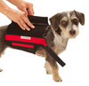 Dog Back Pain Support