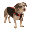WiggleLess Dog Back Brace