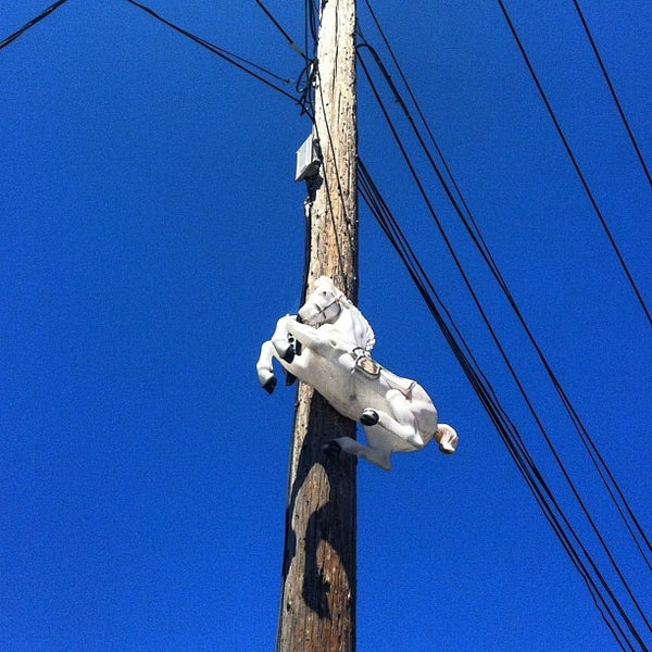 Telephone Pole Horse