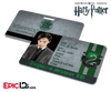 Harry Potter Inspired Hogwarts Student ID (Slytherin) - Tom Riddle