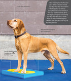 FitPAWS® Targets - Dog Sport Supply Company