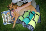 K9FITbed™ with Poster - Dog Sport Supply Company