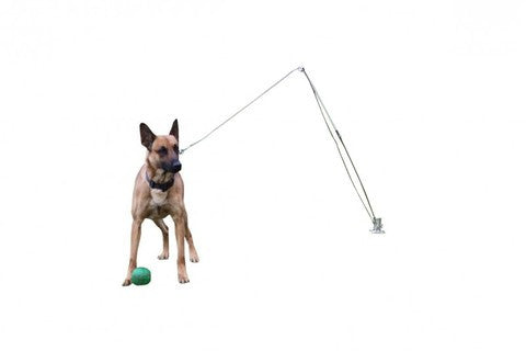 Flex Pole Trainer - Dog Sport Supply Company