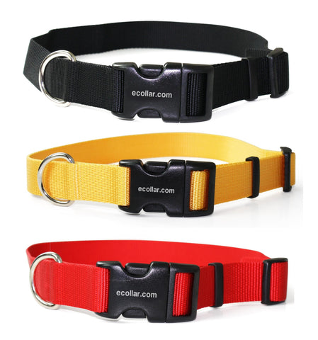 "1"" Nylon Collar With Quick Snap Buckle - Dog Sport Supply Company"